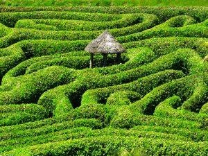 Handanalyse Labyrinth